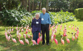 Kay and John Amongst the Flamingoes