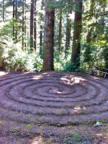 Forestlabyrinth, Stephen Shibley