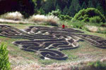 Miscellaneous Labyrinth Example 1