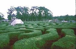 Maze Example 1